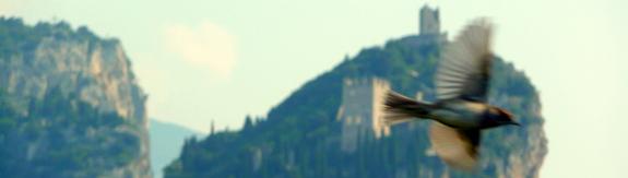 """Castello di Arco """"Familiy"""""""