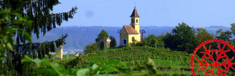 MTB – Dschungelexpress 2 – Bad Gleichenberg – Feldbach und retour